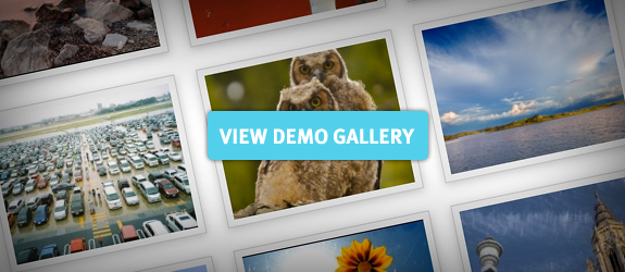 Photo Gallery Demo